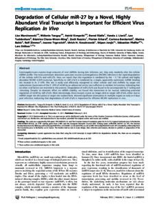 Degradation of cellular mir-27 by a novel, highly abundant ...